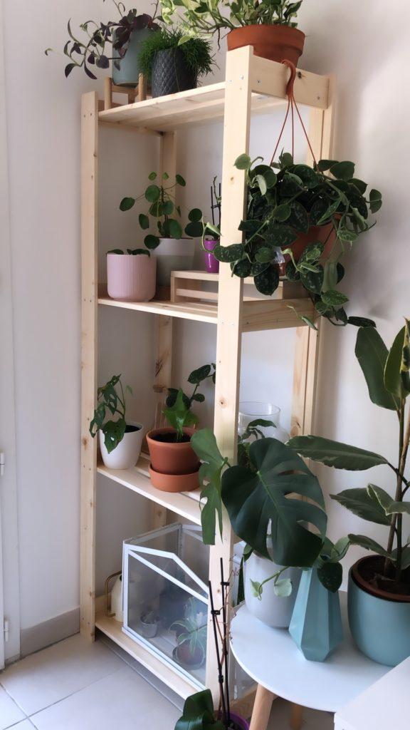 etagere a plantes