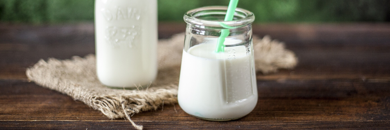 eviction lait de vache et grossesse